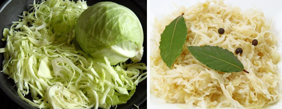 Potrawy z białej kapusty